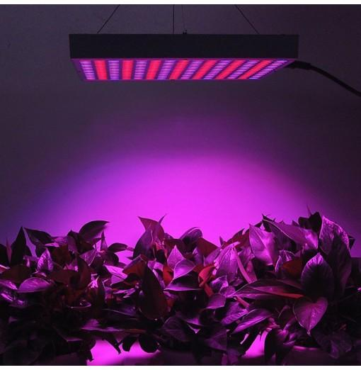 14W Red + Blue LED Plant Grow Light for Indoor Plants