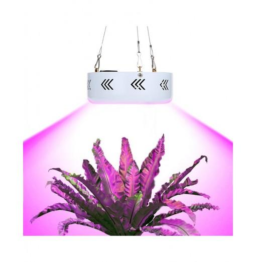 50 x 3W ( True 50W ) Mini UFO LED Plant Grow Light Sanan Emitting Diode