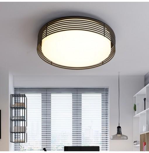 JX7756 - 20W - WW Warm White Simple Ceiling Light