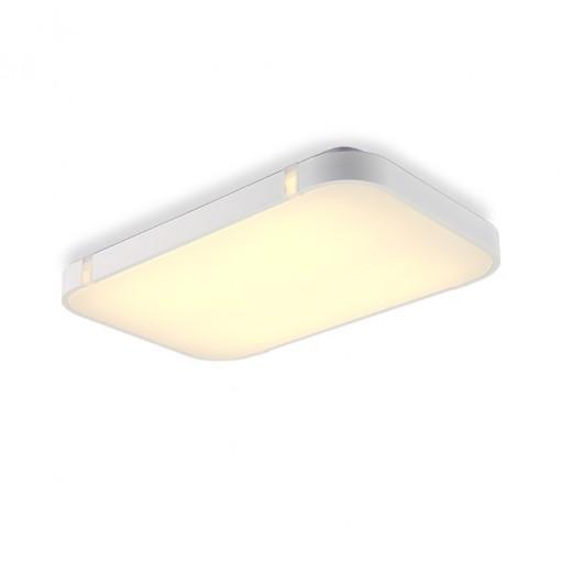I507 - 40W - WJ Promise Dimmable Ceiling Light AC 220V