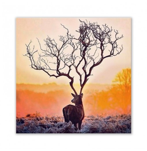 W388 Antler Home Decoration Spray Painting