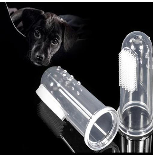 Latest Dog Supplies Online Sale